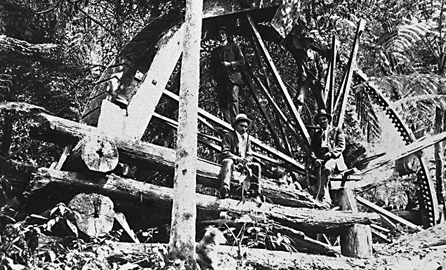 Photo: Work 5 Water wheel at Curtis Falls, Tamborine Mountain, Queensland, circa 1900 [picture] / Photographer unknown. Asset name LS-LSP-CD072-IMG0106