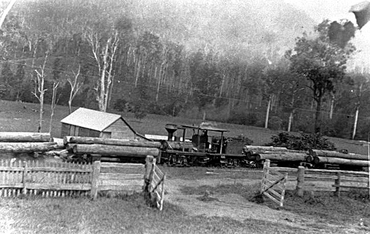Photo: Action 13 Locomotive hauling timber from Upper Coomera Valley to Canungra Mill, Queensland [picture] Asset name LS-LSP-CD098-IMG0055
