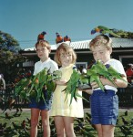 Photo: Kids 2 Children feeding lorikeets at Currumbin Sanctuary, Queensland, circa 1980 [picture] / Photographer unknown. Asset name LS-LSP-CD408-IMG0001