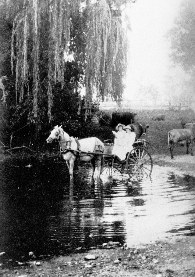 Photo: Action 11 Unidentified ladies with horse and sulky crossing 'The Dip' in Mudgeeraba, Queensland, circa 1918 [picture] / Photographer unknown. Asset name LS-LSP-CD781-IMG0003
