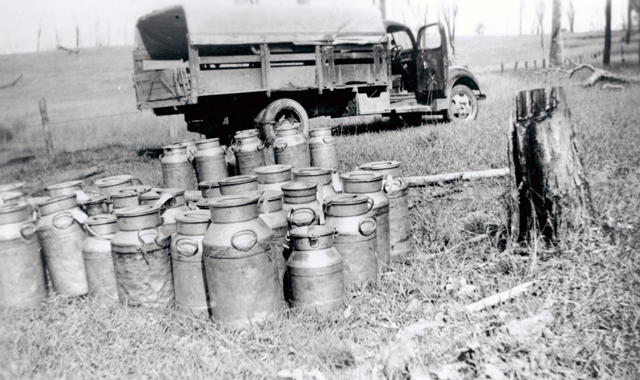 Photo: Work 10 Cream cans ready to be carried to the butter factory, South Coast region, Queensland, circa 1930 [picture] / Photographer unknown. Asset name LS-LSP-CD858-IMG0011